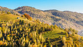Countryside landscape in a romanian villlage — Stock Photo