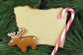 Blank christmas card on fir tree with reindeer gingerbread and cane — Photo