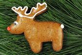 Homemade reindeer gingerbread on fir tree — ストック写真