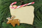 Blank christmas card on fir tree with reindeer gingerbread and candy cane — ストック写真