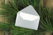 Open silver envelope on fir tree — ストック写真