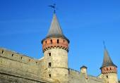 Castle wall and tower. Medieval fortification — Stock Photo