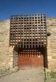 Castle entrance gates — Stock Photo