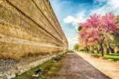 Mura storiche all'interno di Villa Adriana (Villa Adriana), Tivoli, — Foto Stock