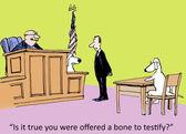 Dog testify color — Stock Vector