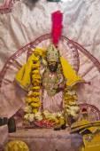 Goddess Yamuna — Stok fotoğraf