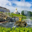 The Peterhof Palace, Saint Petersburg, Russia — Stock fotografie #79126442