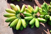 Young green banana — Stock Photo