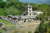 Palenque Ancient Mayan tower the palace temples — Stock Photo