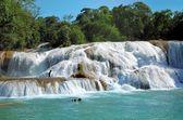Waterfal Agua Azul Chiapas Mexico  — Stock Photo