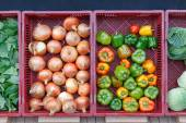 Vegetables in front of the grocery store in autumn — Foto Stock