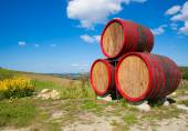 Barrels sign near winehouse — Stock Photo