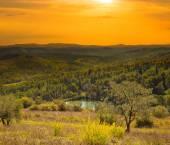 Italian rural landscape at evening — Stock Photo