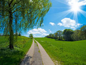 Uphill country track in agrarian landscape — Stock Photo