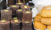 Romanian traditional cheese wrapped in fir bark and wheels of sm — Foto de Stock