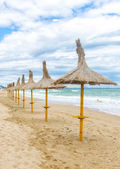 Straw umbrellas on beautifull beach in a windy day with fine san — Stock Photo