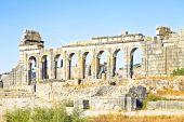 Roman basilica ruins in Morocco — Stok fotoğraf