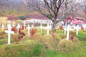 Grave yard in Iceland — Stock Photo