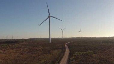 Windmills in the cunucu — Stock Video