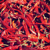 Dried Chilli old retro vintage style — Stock Photo