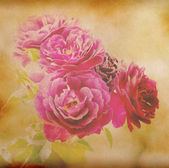Old paper background with pink flower — Stok fotoğraf