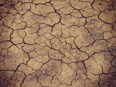 Lake bed drying up due to drought with retro filter effect — Stock Photo