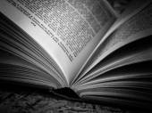 Black and white  Open book — Stock Photo