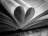 Coeur d'amour noir et blanc dans un livre — Photo