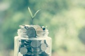 Plant growing out of coins with filter effect retro vintage style — Stock Photo