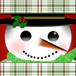 Closeup of Snowman's face Illustration — Stock Photo #58873147