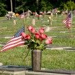 American Veteran's Memorial Site — Stock Photo #65696207