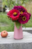 Red flowers in a vase — Stock Photo