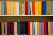 Color books on the shelfs — Stock Photo