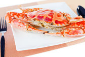 Blue crab on a plate — Stock Photo