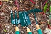 Gardening tools on the ground in backyard — Stock Photo