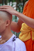 Hair on lotus leaves tray from ordination of Thai monk - Stock I — Stock Photo