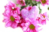 Valentine heart fabric with pink chrysanthemum- Stock Image — Stock Photo