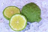 Kaffir limes on ice  - Stock Image — Stock Photo