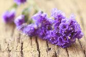 Romantic background - Stock Image — Stock Photo