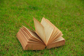 Stock Photo - Open book on nature background — Stock Photo