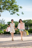 Ladies with shopping bags — Stock Photo
