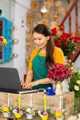 Business for women — Foto Stock