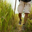 Traveler walking in the grass — Stock Photo #63670475