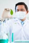 Botanist  studying photosynthesis — Stock Photo