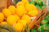 Fresh yellow melons — Stock Photo