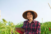 Young woman farmer — Stock Photo