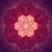 Pink Flower Mandala with purple background. Ornamental round floral Pattern. — Stock Photo