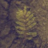 Sepia Vintage card with Leaf and Old Paper Texture. — Stock Photo