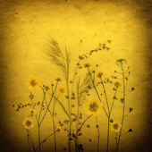 Sepia Vintage card with Leaves, yellow flowers and Old Paper Texture. — Stock Photo