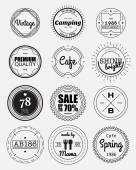 12 vintage cirkel badges collectie — Stockvector
